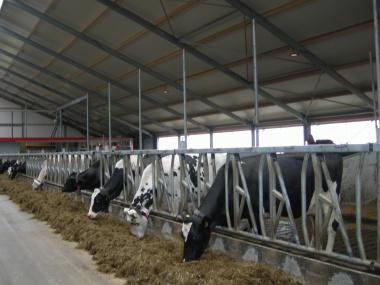 Minder rompslomp voor subsidies biologische landbouw