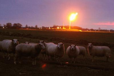 FNP ynformaasjejun gaswinning Langezwaag
