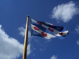 Fryske flage