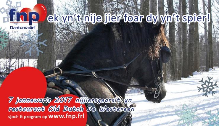 advertinsje RTV NOF nijjier 2017